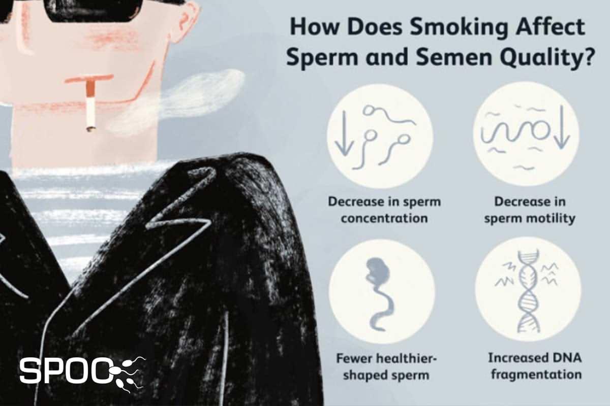 تاثیر مصرف سیگار و دخانیات بر کیفیت اسپرم
