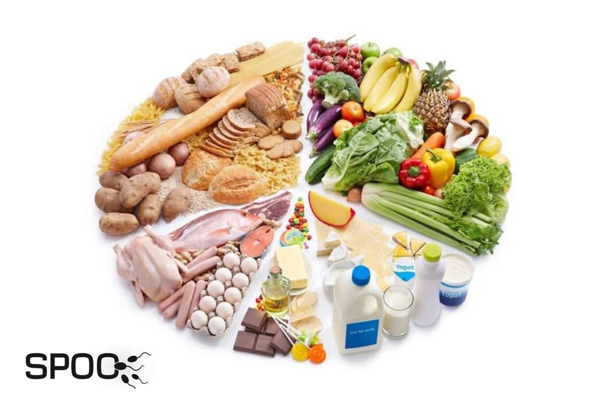 تغذیه از عوامل تاثیرگذار بر کیفیت اسپرم
